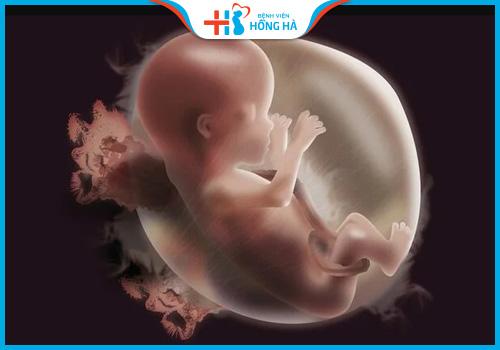 thuốc tây gây dị tật thai nhi