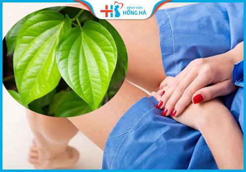 xông hơi bằng lá trầu không giúp chữa viêm lộ tuyến