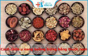 11 Cách chữa u nang buồng trứng bằng thuốc nam? Có hiệu quả không?