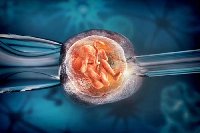 Chi phí thụ tinh ống nghiệm IVF cao hơn