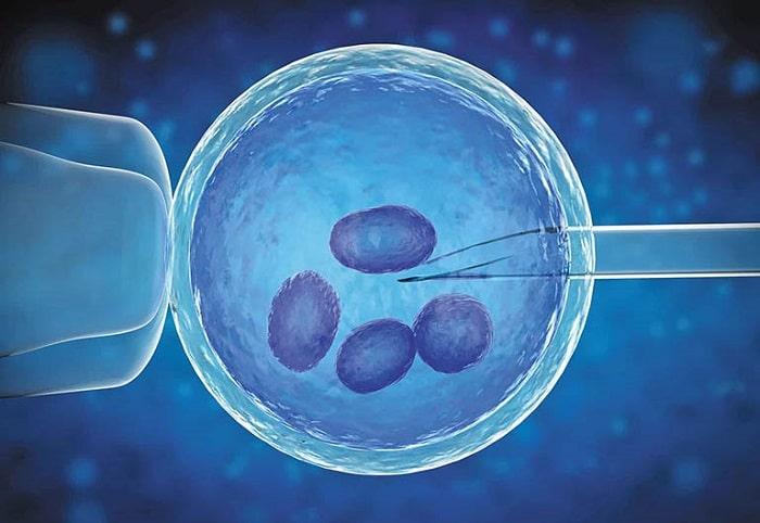 Tỷ lệ thành công của thụ tinh trong ống nghiệm