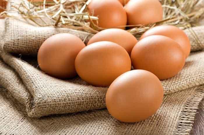 Những quả trứng gà có thể tăng chất lượng và số lượng tinh trùng một cách kinh ngạc