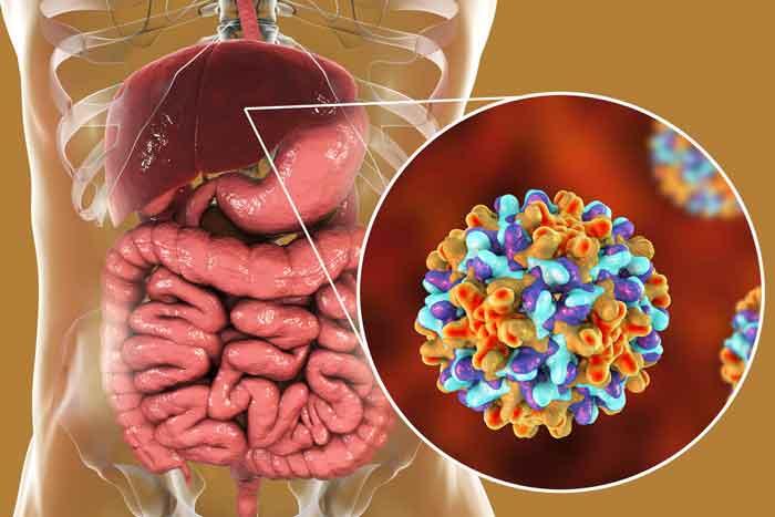 Bệnh viêm gan B có thể thực hiện phương pháp thụ tinh ống nghiệm IVF